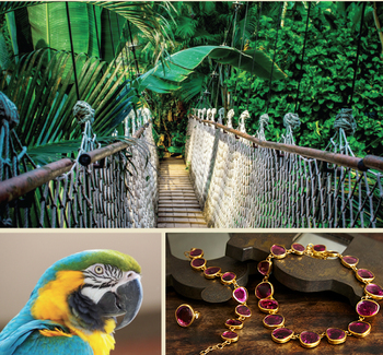 Saving the Amazon Rainforest one Tourmaline at a Time